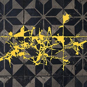 PHOEBUS Rotterdam, Eendrachtsweg 61, NL<br />2008, 99 x 30 cm