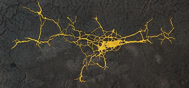Torstr.96, Part II, Berlin, DE<br />2009, 105 x 224 cm